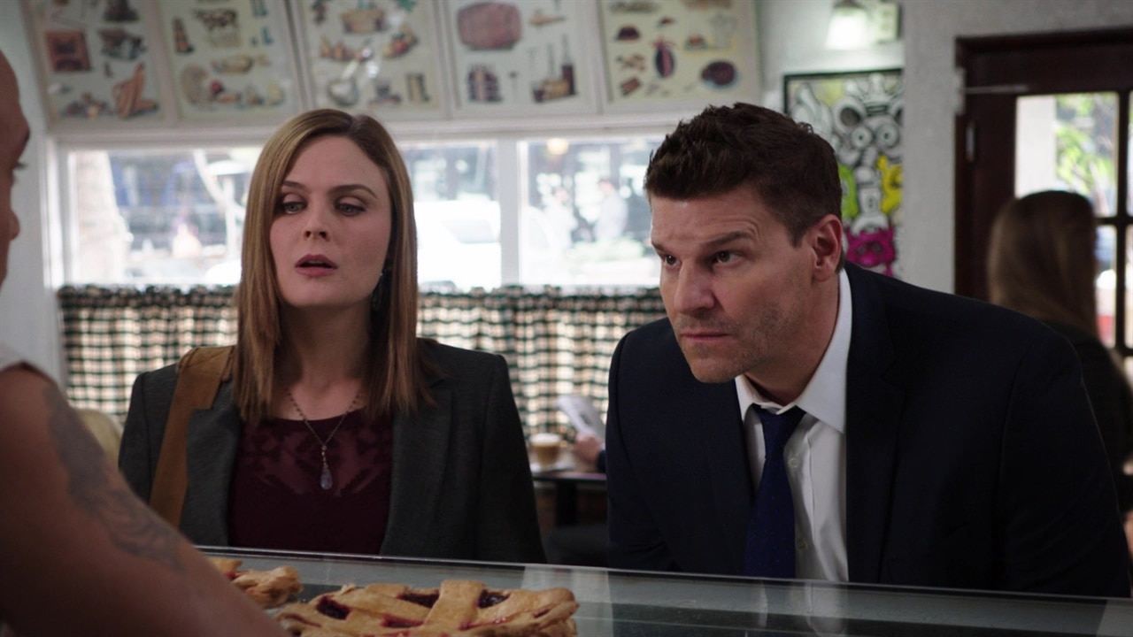 bones the series episode guide
