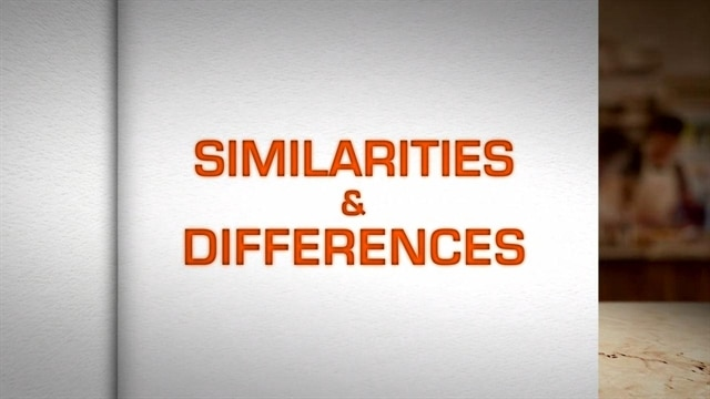 SONday FUNday: Similarities & Differences