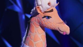 the giraffe is revealed tile image